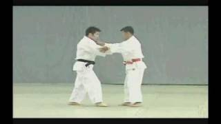 Video Nage No Kata Completo MP3, 3GP, MP4, WEBM, AVI, FLV Desember 2018