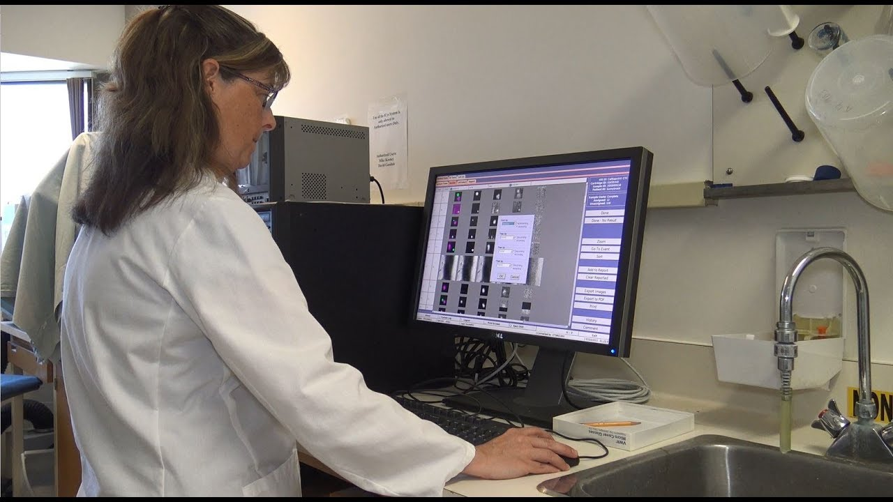 How Lawson Researchers are Tracking the Spread of Cancer
