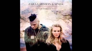 Thumbnail for Zara Larsson vs. MNEK — Never Forget You