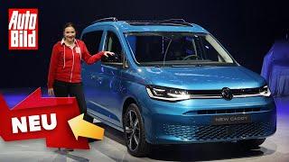 VW Caddy (2020): Neuvorstellung - Hochdachkombi - Info by Auto Bild