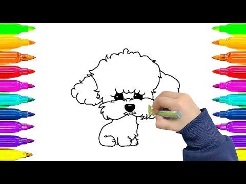 Pintando Animais: Cachorrinho