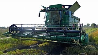 Video John Deere S680i -MY2016- mietitura riso / rice harvest 24/09/2016 MP3, 3GP, MP4, WEBM, AVI, FLV November 2017
