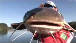 Pesca Dinâmica - Pescaria Dos Grandes Peixes De Couro No Rio Juruena- Parte 1
