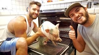Introducing our brand new pig that we bought/ borrowed for the day from a local farm... We found him new parents and he is on his way ti a pig sanctuary! dont ...