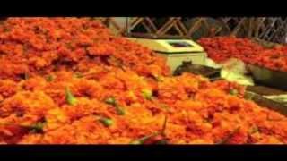 Chithram Varachittu | Madhu Balakrishnan | Vasantham