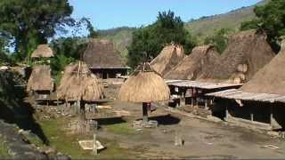 Bajawa Indonesia  City pictures : INDONESIA Kalongs at Riung & Ngada people of Bajawa, Flores (sd-video)