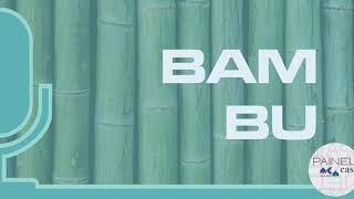 PODCAST | 1 | Bambu: tradição, mercado e oportunidade