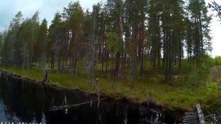 Карелия 2015 Рыбалка на старом мосту!