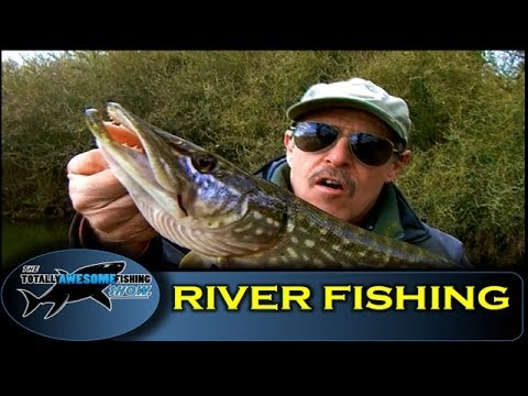 Beginners River Fishing Tips (Part1) – Swim Selection in Small Rivers – TAFishing