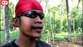 Video DESPACITO - Fersi Jawa Ngapak  ( Dance & Song ) #combrose (HD) MP3, 3GP, MP4, WEBM, AVI, FLV April 2018
