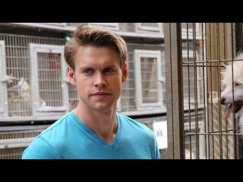 Chord Overstreet Confirmed for Final Glee Season