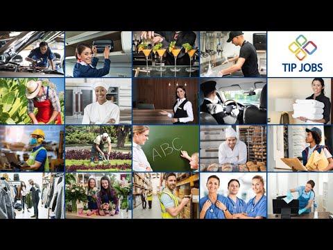 Go To: TIP JOBS - JOB Opportunities
