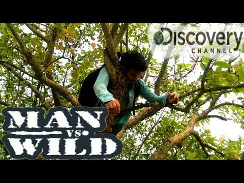 Video MEN VS WILD-FUNNY DISCOVERY PART-2||FALTU LORA||BEST ASSAMESE FANNY VIDEO download in MP3, 3GP, MP4, WEBM, AVI, FLV January 2017