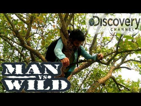 Video MEN VS WILD-FUNNY DISCOVERY PART-2||FALTU LORA||BEST ASSAMESE FANNY VIDEO download in MP3, 3GP, MP4, WEBM, AVI, FLV January 2017