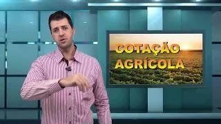 Capa do vídeo Logística para escoamento da produção de leite no Paraná é mostrada por estudo