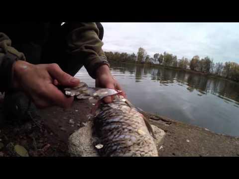 видео рыбалка на крупного налима