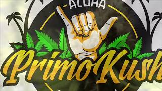 Happy 420 Video!!! by Primo Kush