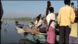 Ethiopia: Birds, Ziway And Awassa Fish Market
