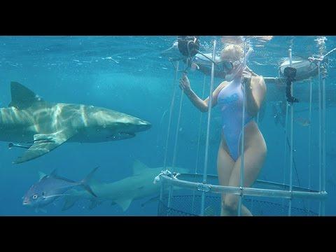Momento en el que tiburón muerde a actriz porno mientras filmaba anuncio