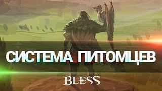 Видео к игре Bless из публикации: Великое разнообразие спутников и ездовых животных в Bless