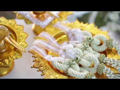 Arty Decorate Wedding Ple + David