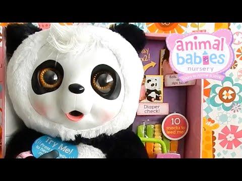 Animal Babies Crunchy Munch Baby Panda- Cute or Creepy?