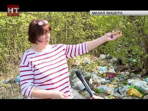 Жители одного из районов Малой Вишеры обеспокоены проблемой вывоза мусора