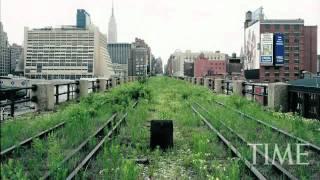 Já imaginou se aquela área abandonada da sua cidade ou bairro fosse transformada num parque arborizado, com espaço para caminhadas, piqueniques e repleto de ...