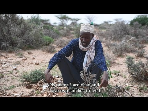 Somaliland: Deadly Drought