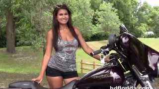 8. Used 2006 Harley Davidson Street Glide for sale in Hudson fl