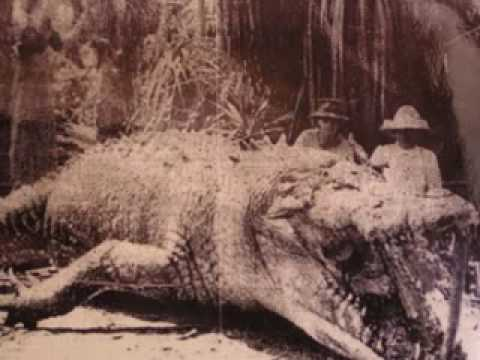 30 Ft Crocodile http://www.jalopyjournal.com/forum/showthread.php?t=428585&page=610