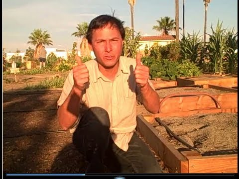Garden tips - John from http://www.growingyourgreens.com/ goes on a field trip to the Corona Community to share with you the 3 tips to grow the most productive community (...