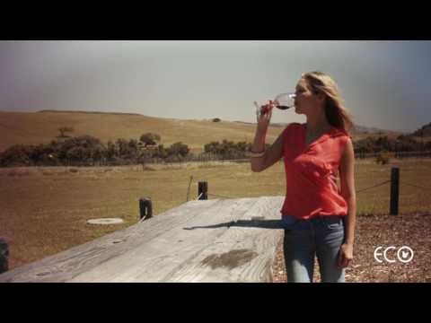 Sustainable Wine Tasting in Santa Ynez Valley