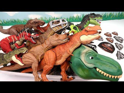 50 Tyrannosaurus Dinosaur Box - Jurassic World, Walking Dino, Anatomy Set