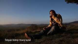 Video Vraný koně - Štěpán Volný
