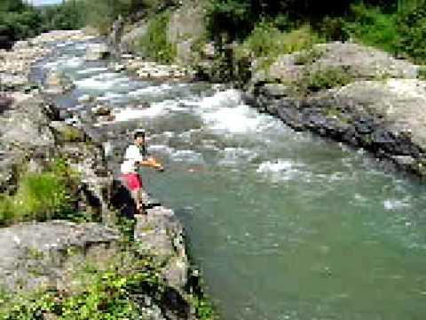 Gran Salmon Fario, Chinok. Rio Lircay VII Region.