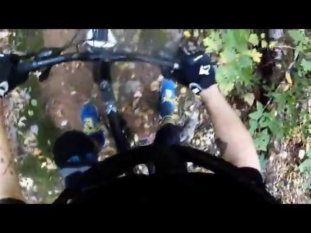 Brookvale-mtb-fall-trail-ride