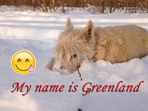 My name is Greenland :)