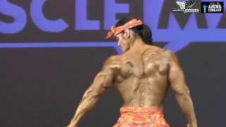 Video Ade Rai - Musclemania Asia 2015 MP3, 3GP, MP4, WEBM, AVI, FLV Desember 2018