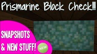 NEW Prismarine Block Check! - GOOD or BAD? - Minecraft