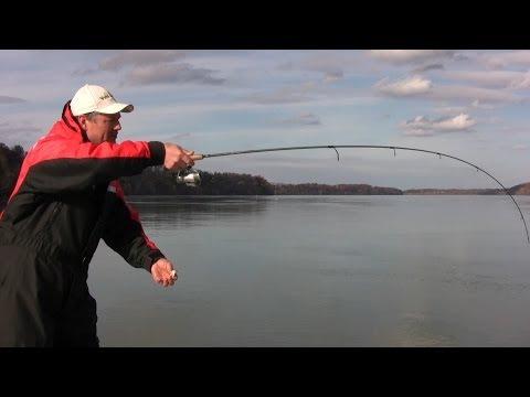 обучение для рыбалки
