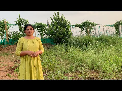 ప్రకృతి వ్యవసాయం వైపు పయనం🙏🙏   మిగతా మొక్కలు కూడా నాటాము   B Like Bindu