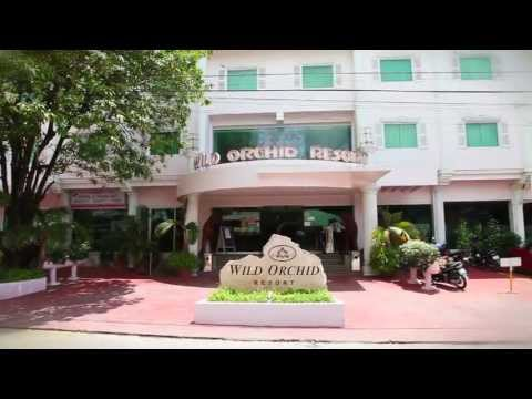 Wild Orchid Angeles City Watch The Video