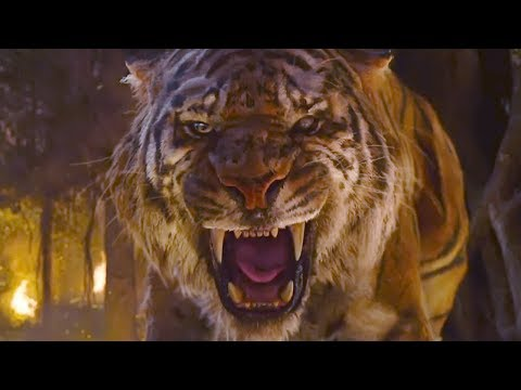 The Jungle Book 2016 - Shere Khan Kills Akela | Death Scenes