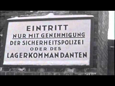 Die NSDAP - Hitlers politische Bewegung / Reportage übe ...