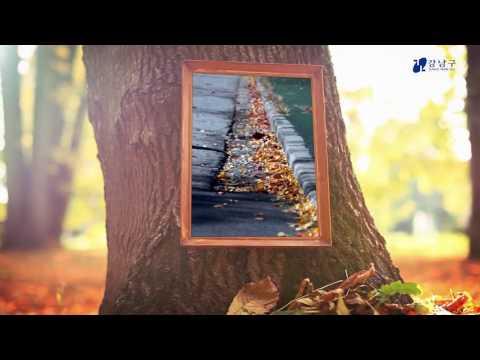 강남, 공감 1분 - 미래유산 양재천의 가을