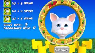 Slot Tales Crazy Kitten FREE YouTube video