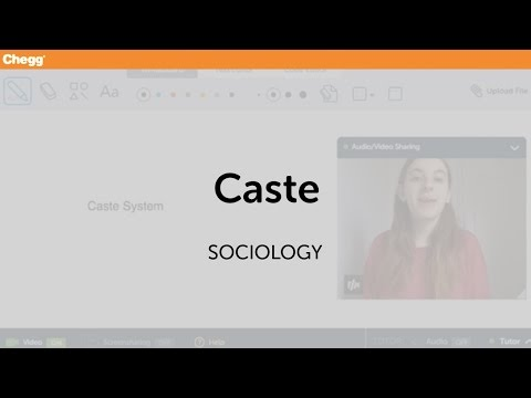 what is the definition of the caste system