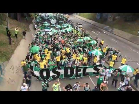 MARCHA VERDOLAGA - CLÁSICO ANTIOQUEÑO - Los del Sur - Atlético Nacional - Colombia - América del Sur