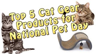 Top 5 Cat Products & Gear for National Pet Day